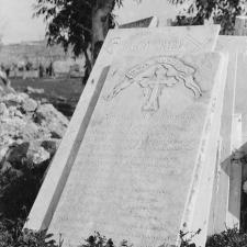 Un decisivo evento nacional de Australia y Nueva Zelanda tuvo lugar a la sombra del Genocidio Armenio.